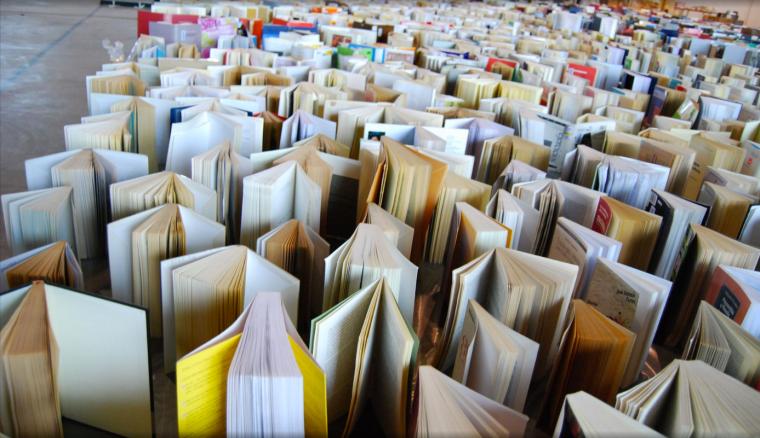 50'000 ouvrages ont dû être évacués lors de l'incendie de l'ancienne Ecole de chimie de l'Université de Genève (c) 2008 Office protection civile Ville de Genève